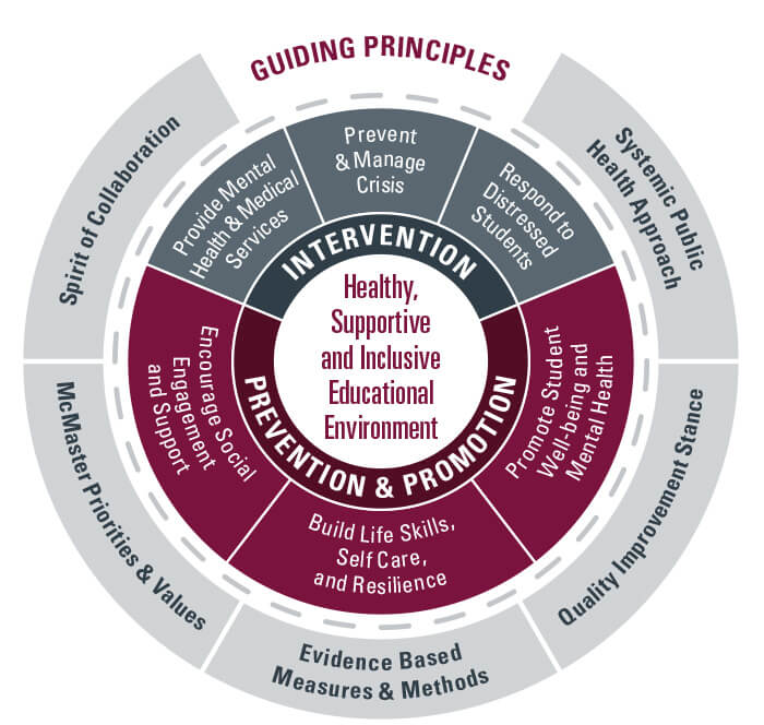 Healthy, Supportive and Inclusive Educational Environment Framework Graphic
